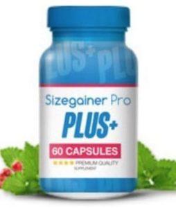 Sizegainer Pro Produkt
